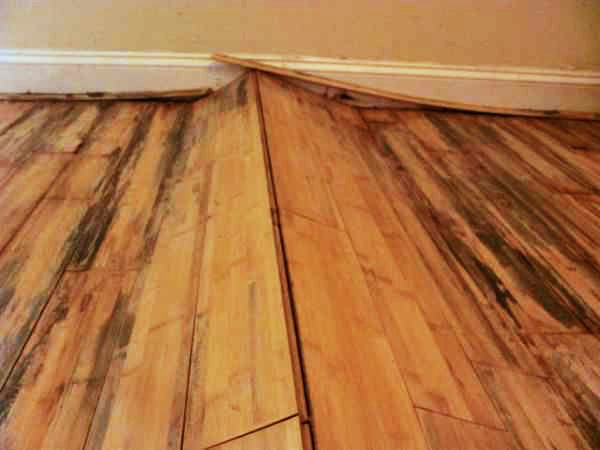 Hardwood Flooring Repair Sheffield Hardwood